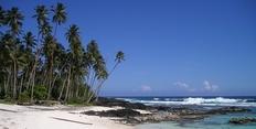 Písečná pláž, moře a palmy s CK Eso Travel